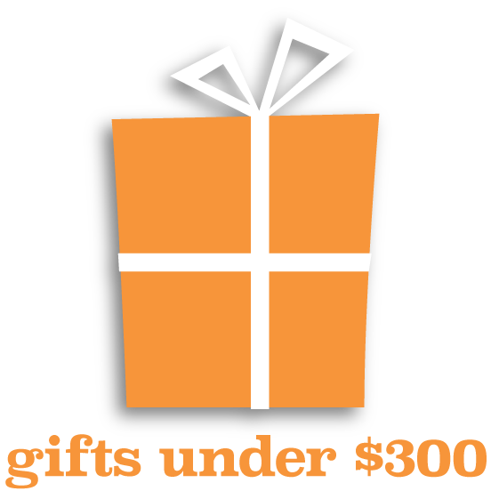 gifts under $300